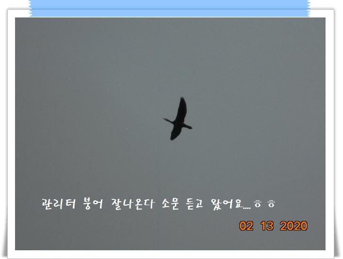 [꾸미기]DSC01355.JPG