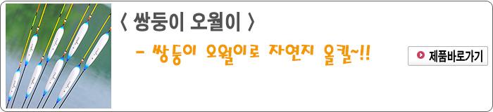 201406 - 02.쌍둥이 오월이.jpg