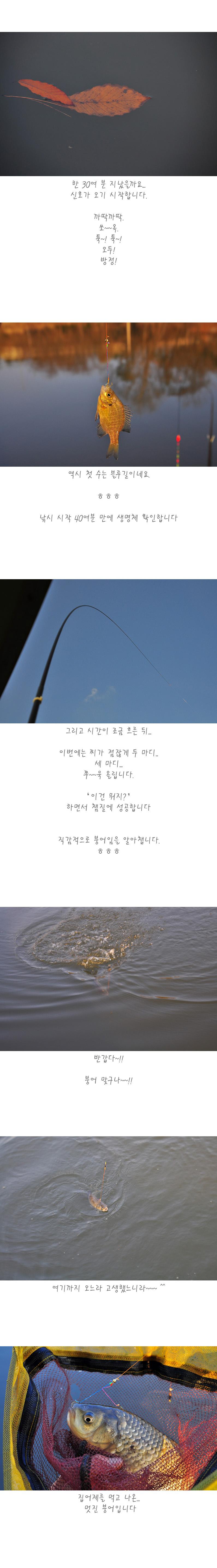 반제지 - 05.jpg