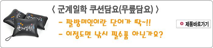 201611 - 6.군계일학 쿠션담요(무릎담요).jpg